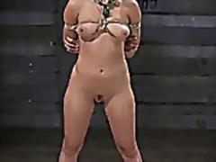 جنس: فتشية