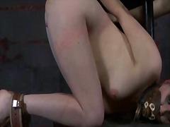 Pornići: Ekstremno, Bdsm, Rob, Ponižavanje