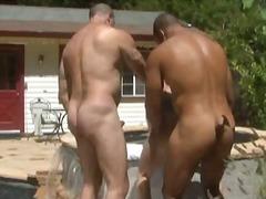 Porno: Trekantsex, Hardcore, Udendørs, Bjørnemænd
