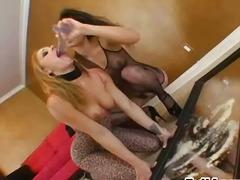 Porno: Hermosas, Juguetes, Tías En Bikini, Juguetes