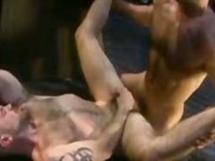 Porno: Orālā Seksa, Dejojošais Lācis, Anālais, Fetišs