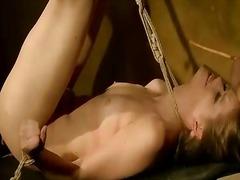 Porno: Ekstreme, Sado Dhe Maho Skllavizëm, Poshtëruese, Hardkorë
