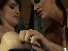 Porno: Lezbiket, Dominimi