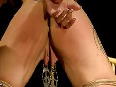 Porno: Belleses, Pèl-Roges, Dominació-Submissió