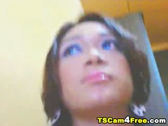 جنس: شيميل, متحولون, رعشة, زبار