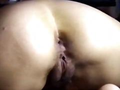 Pornići: Latinske Ribe, Indjski, Brazil, Dlakave
