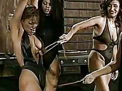 جنس: نساء مسيطرات, سمراوات, تقييد وسادية, زنوج