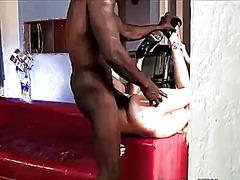 Porn: Ռասաների Միջև