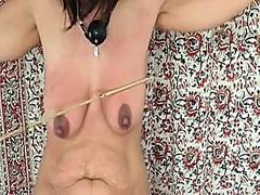 Porno: Belleses, Tetes, Brutal